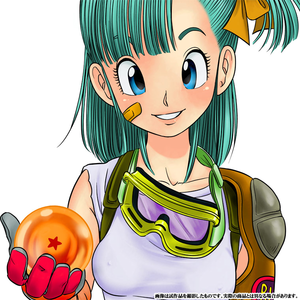 The Winner of the Monat August 2014 is... BULMA!