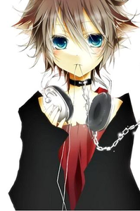 Name: Hayate Age:About 600 years old Gender:Unknown(people consider him to be male but his voic