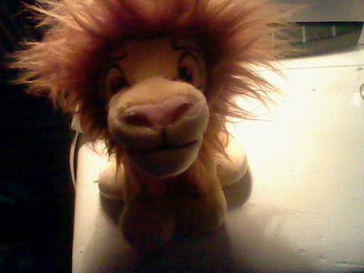 My Adult Simba plush :)