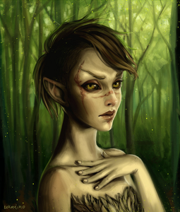Name: Allia Oakrun Gender: Female Age: 17 Race: Bosmer (Wood Elf) Weapon:Wooden Bow and 25 Iron