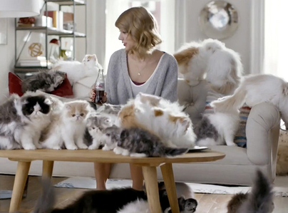 In this pic some of the Pusa are of taylor.
