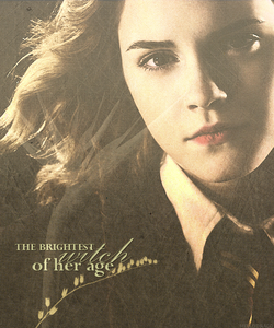 http://images2.fanpop.com/images/photos/7800000/Hermione-Wallpapers-hermione-granger-7823401-1024-768