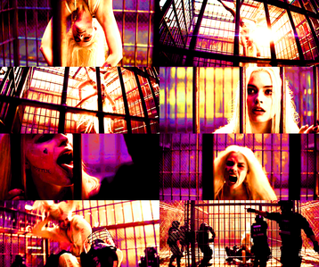 [b]7. Favourite scene from the Comic Con trailer?[/b] Couldn't choose between the scenes of Harley