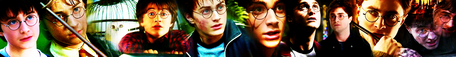 Harry James Potter Banner