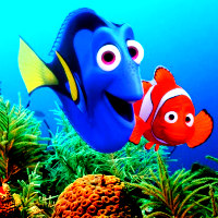 Finding Dory and Finding Nemo Icon 1