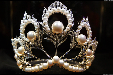 Maybe this, it looks princessy!