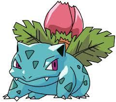 Ivysaur POKEMON