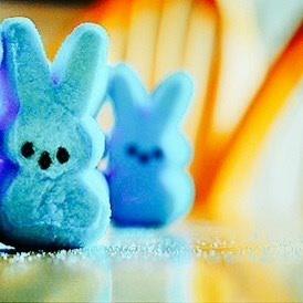 [b]Round 4: Blue Candy[/b] [u][b]Participants:[/u][/b] ace2000 MorG14 zanhar1 poulamikundu Is