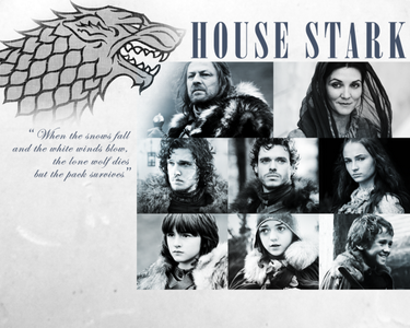 siku 10: Stark au Lannister Definitely [b] Stark [/b]