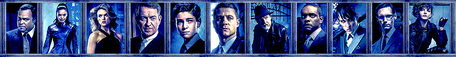 I'm afraid I blue all my Gotham banners.