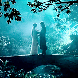 [b]Day 10 - favorito! couple?[/b] Aragorn & Arwen