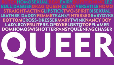 What's wrong with being a queer?