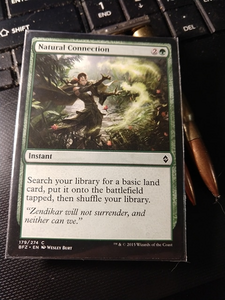 I found Zanhar in my brother's MTG collection