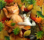 Mine - Autumn Kitties,Icon 🍂