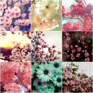 here is a spring collage i made!