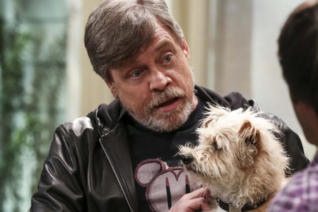 Favourite celebrity - Mark Hamill
