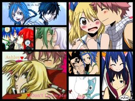 lucy and natsu gray and juvia lyon and chelia  erza and jellal evergreen and elfman cana and bac