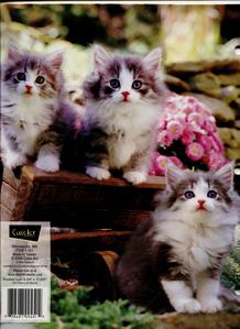 cats, my absolute paborito animal