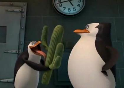 S: Right, Rico? >:| R: o.o Eheheh... <:D