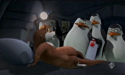 Смотреть секс пингвины из мадагаскара секс всеми