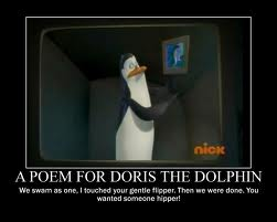 A poem for Doris the dolphin: We swam as one, I touched your gentle flipper. Then we were done...You