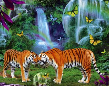 tiger.............