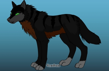 Name: Blood Age: looks 21 in loup years but is really 20,000 years thanks to a cruse. Color: (in pi