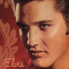 Take it in turns to say something about Elvis starting from A to Z.