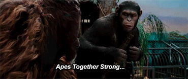 apes together strong apes alone weak