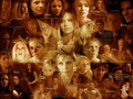 Angel & Buffy - buffy-the-vampire-slayer wallpaper