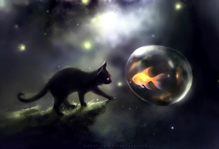 Cats black cat