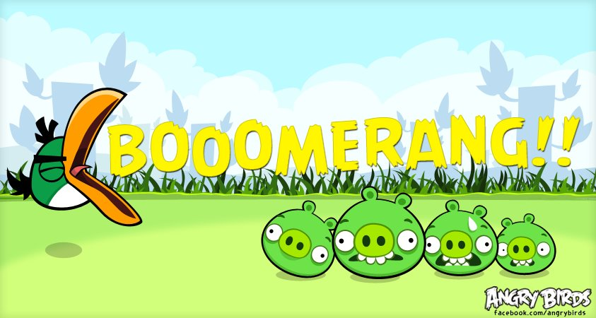 Boomerang! - Angry Birds Photo (32080245) - Fanpop