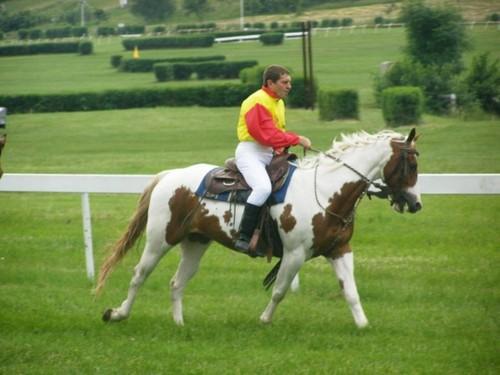 Josef Vana on mottled horse