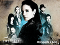 Lost Girl Wallpaper - lost-girl wallpaper