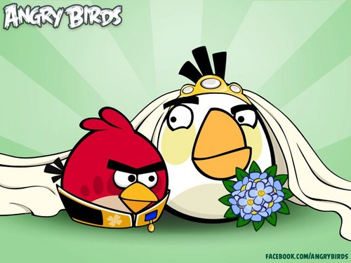 Married Angry Birds