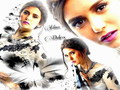 Nina Dobrev  - nina-dobrev wallpaper