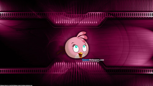 angry birds wallpaper probably containing a dishwasher entitled rosa, -de-rosa Bird