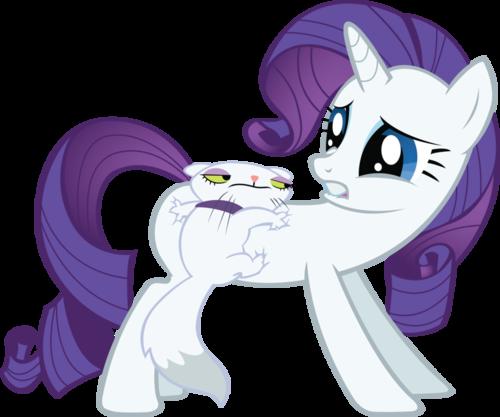 Ponies & Their Pets