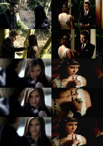 The Vampire Diaries Couples fondo de pantalla probably containing a portrait entitled Stelena
