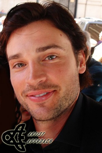 Tom Welling Hintergrund containing a business suit entitled tom