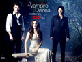 the-vampire-diaries-tv-show - ►TVD by DaVe◄ wallpaper