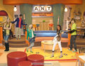A.N.T. Farm ..my art - ant-farm fan art