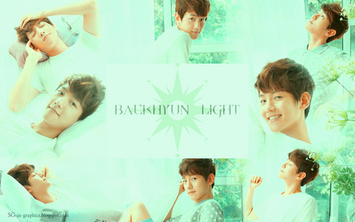 "EXO-K ""The Face Shop"" fondo de pantalla"