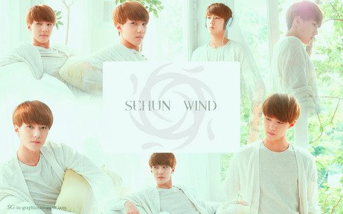 "EXO-K wallpaper with a portrait titled EXO-K ""The Face Shop"" Wallpapers"