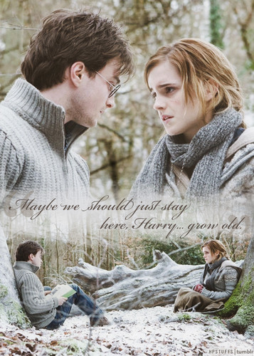 Harry and Hermione wallpaper titled Harmony ♥