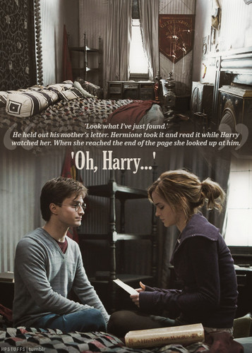Harry and Hermione wallpaper with a sign entitled Harmony ♥