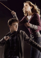 Harry & Hermione - harry-and-hermione photo