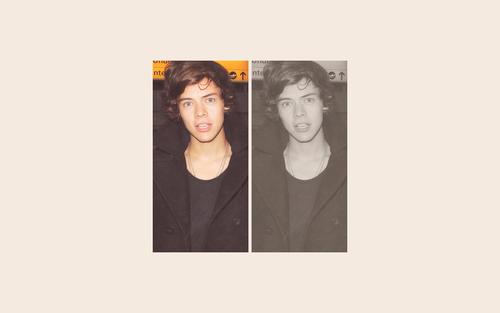 Harry&#39;s Wallpaper <3333