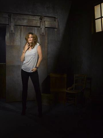 Kate Beckett achtergrond with a living room entitled Kate