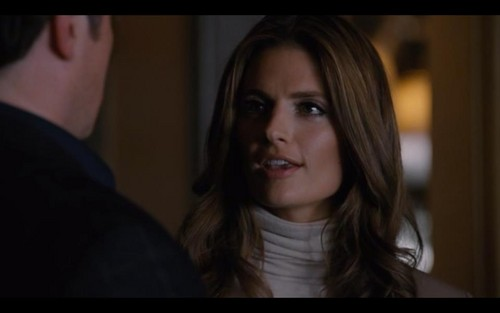 Kate Beckett দেওয়ালপত্র with a portrait titled Katherine Beckett